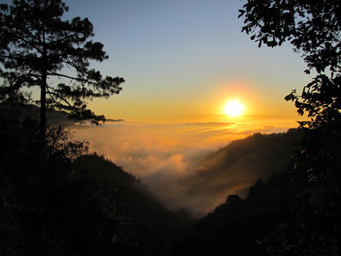 Cloud Forest Sunset, Oaxaca