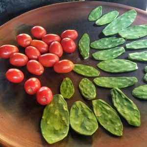 Nopales and Tomatoes on a Comal
