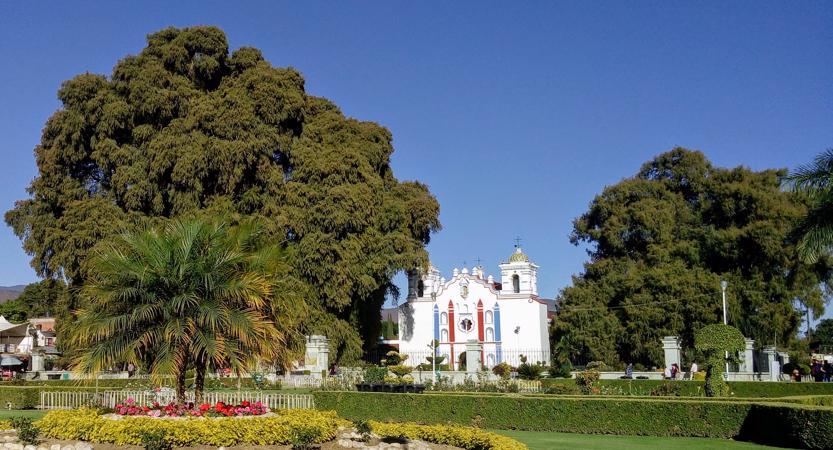 Santa Maria el Tule