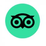 Tripadvisor Owl